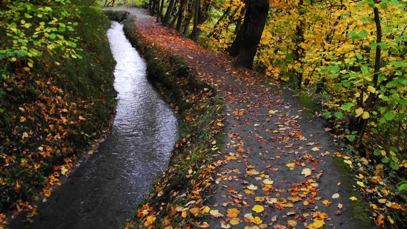 bisse-balade-automne-randonnee